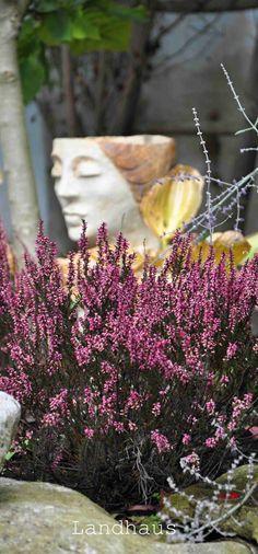 Garden Design, The Originals, Red, Farmhouse, Landscape Designs, Yard Design
