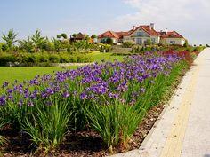 Piękne Ogrody Kielce