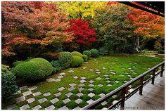Classic Kyoto: Tofuku-ji temple (東福寺) rear garden in autum…   Flickr