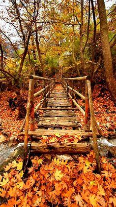 Wooden bridge in the heart of November.. Trikala (Thessaly), Greece   by Cretense