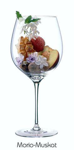 Morio Muscat (white) | Aromas of white peach, nutmeg, lily of the valley, jasmin, violet, lychee, ripe pineapple, lemon balm | Palatinate, Germany
