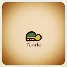 Normal Turtle