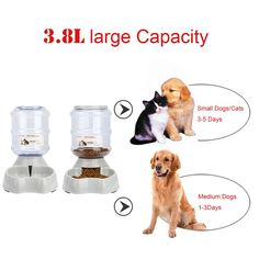 Automatic Pet FeederPet Water Feeder FountainDog Cat Water Food Dispenser BowlPet Waterer Feeder Replenish Set By Meleg Otthon * Be sure to check out this awesome product. (This is an affiliate link) Drinking Fountain, Drinking Water, Dog Feeder, Cat Feeding, Water Dispenser, Medium Dogs, Small Dogs, Dog Food Recipes, Dog Cat