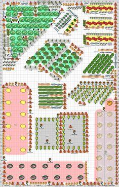 Garden Plan - 2013: Garden Plan 4