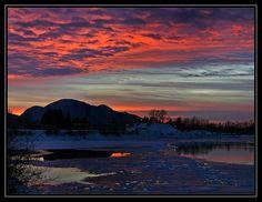 ~Winter Reflections~ - Chilliwack, British Columbia