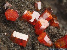 Vanadinite. Hamburg Mine, Silver District, Arizona, USA FOV=4 mm Cadeau László Horváth (Canada) / Photo Tóth László 2016