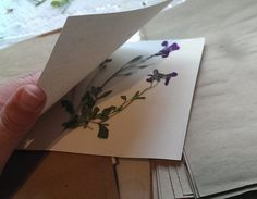 diy tutorial microwave flower pressing, crafts, 4 check to see if your flowers is fully dry and pressed if not repeat process 3 until you are satisfied Flower Tutorial, Diy Tutorial, Diy Valentine's Centerpieces, Decorations, Light Up Canvas, Mother Daughter Projects, Four Micro Onde, Pressed Flower Art, Diy Plant Stand