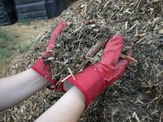 Gardening Composting Mulch it! Cover crops for organic gardens. - Your stockpile of mulching materials and the organic content of your soil – are what keep your crops in the game. Learn about the various forms of organic mulch… Garden Compost, Garden Soil, Edible Garden, Garden Works, Organic Mulch, Organic Gardening Tips, Growing Tomatoes In Containers, Growing Vegetables, Tomato Garden