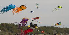 Great Lakes Kite Festival | Flickr - Photo Sharing!