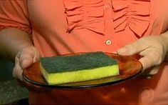 Bactérias na esponja