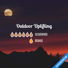 Outdoor Uplifting - Essential Oil Diffuser Blend