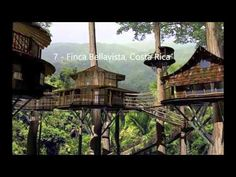 Finca Bellavista Rainforest Village, Costa Rica - a permanent community of treehouses at the base of a rain forest mountain. The goal of the community is to preserve rain forest acreage and promote sustainable living arrangements. Costa Rica, Rainforest Ecosystem, Cool Tree Houses, Tree House Designs, Ewok, Tree Tops, Forest Mountain, In The Tree, Big Tree