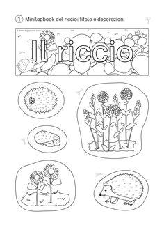 1-KiGaPortal-Kindergarten-Scuola-dell-infanzia-lapbook-minilapbook-ilRiccio-titolo-decorazioni-sw-2