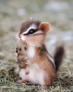 Baby Animals Super Cute, Cute Little Animals, Cute Funny Animals, Cute Cats, Baby Animals Pictures, Cute Animal Photos, Felt Animals, Animals And Pets, Cute Creatures