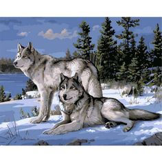 Wolf Digital Oil Painting DIY Frameless Paint Oil Painting Kit Canvas Living Room Wall Art Home Decoration 40*30cm