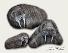 painted walrus rocks