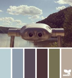 .#blue #brown #palette #color