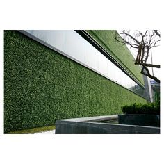 e-Joy 2 ft. H x 2 ft. W Artificial Topiary Milan Hedge Plant Fence Panel Artificial Hedges, Artificial Boxwood, Artificial Turf, Artificial Plants, Jardin Vertical Artificial, Moss Wall, Patio Interior, Privacy Fences, Fence Panels