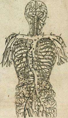 Anatomiae amphitheatrvm effigie triplici, more et conditione varia, designatvm | 1623 | Fludd, Robert | Bry, Johann Theodor de