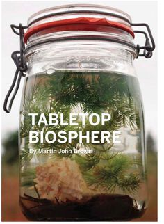 DIY Tabletop Biosphere. Do it right the first time and you'll never have to feed the shrimp, clean the water, or anything else to it.