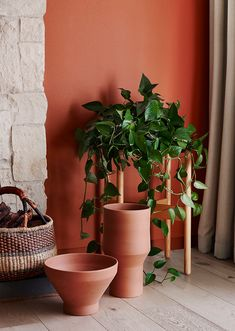 Earlier this week I shared my interpretation of Kinship, one of the four themes that make up the Dulux Colour Trends 2018 Balance. An exciting project to be a part of as an interior stylist, the Dulux Terracota, Terra Cotta Paint Color, Terracotta Paint, Color Trends 2018, Accent Wall Colors, Accent Walls, African Colors, Paint Your House, Interior Decorating