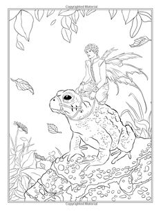 Fairy Companions Coloring Book - Fairy Romance, Dragons and Fairy Pets (Fantasy Art Coloring by Selina) (Volume 4): Selina Fenech: 9780994355447: Amazon.com: Books