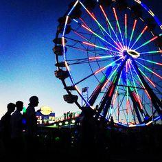 EDC las vegas Edc Las Vegas, Summer Festivals, Will Arnett, Edm Music, Electric Forest, Raves, Instagram Accounts, Laughter, Bucket