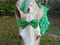 Green Sequin Bow for Horse or Pony Tails - Equine Forelock or Tail Ornaments -- Decoration for Horse