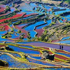 Photo walking in colors by zhangning  on 500px