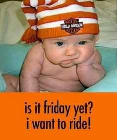 @Laura Jayson Harley-Davidson #motorcycles #babies