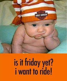 @Laura Jayson Jayson Harley-Davidson #motorcycles #babies