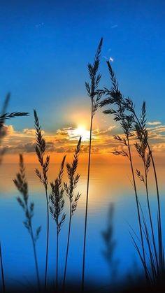 nascer do sol - Life ideas Beautiful Nature Wallpaper, Beautiful Sunset, Beautiful Landscapes, Beautiful Images Of Nature, Sunset Photography, Landscape Photography, Landscape Art, Landscape Paintings, Sunrise Wallpaper