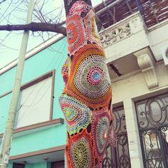 Urban Knitting - Palermo - Buenos Aires - Argentina - Árbol - Tejido - Crochet
