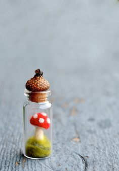 A sweet little red toadstool mushroom terrarium with an acorn cap cork - to add a whimsical touch to your home. Can display on a shelf, table, desk - the possibilities are endless!