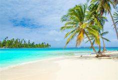 The Best Compilation of Caribbean, Tropical Island, Hawaiian Happy Instrumental Music for Full 10 Hours! Caribbean *** I have all the licenses and commercial. Beach Relax, Pink Sand Beach, Desert Island, Photography Backdrops, Beach Photos, Amazing Destinations, Beautiful Beaches, Caribbean, Scenery