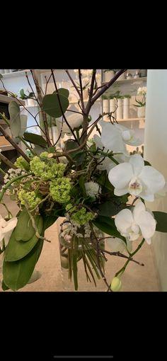 Bouquet, Creations, Plants, Green, Flowers, Bunch Of Flowers, Bouquets, Plant, Planting