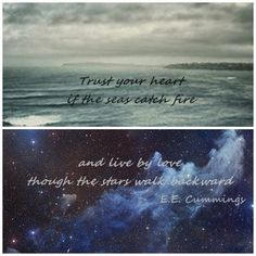 Trust your heart if the seas catch fire And live by love though the stars walk backward - E.E. Cummings  It's about taking chances.