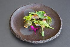 Sashimi de Salmonete e Ervas. Restaurante Midori