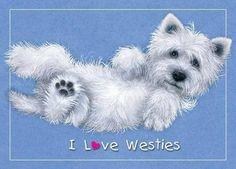 I love Westies'
