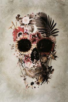 Skull #Natural