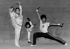 """It's a family affair. Donnie Yen, his sister Chris Yen, and mother Bow Sim Mark exhibiting various Wushu poses.""  http://gutsanduppercuts.tumblr.com/post/32279689334/its-a-family-affair-donnie-yen-his-sister"