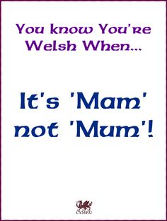 """You know you're Welsh when it's """"Mam"""" not """"Mum""""! Facts About Wales, Learn Welsh, Welsh English, Welsh Names, Welsh Love Spoons, Welsh Words, Welsh Language, Welsh Rugby, Snowdonia"""