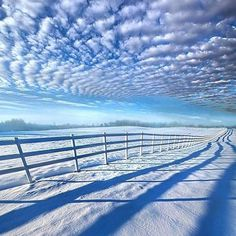 #Repost @edaccessible:Always Whiter on the Other Side of the Fence - Wisconsin Horizons by Phil Koch. #winter #cold #holidays #TagsForLikes #snow #rain #christmas #snowing #blizzard #snowflakes #wintertime #staywarm #cloudy #instawinter #instagood #holidayseason #photooftheday #season #seasons #nature #wisconsin #horizon #caturday #mountains #landscape #photography #sunrise #sunset