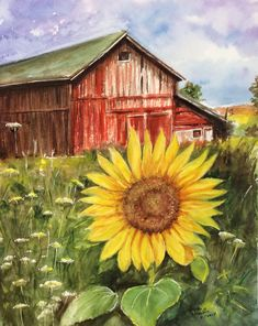 Red Barn Watercolor Painting Farm Original Painting Sunflower ART handmade by An… Peinture de ferme aquarelle grange rouge ferme peinture … Watercolor Sunflower, Sunflower Art, Watercolor Paintings, Sunflower Paintings, Paintings Of Sunflowers, Acrylic Paintings, Red Barn Painting, Summer Painting, Farm Paintings