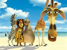 The four main Characters of the Madagascar film.