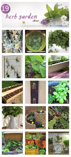 19 Unique Herb Garden Ideas!