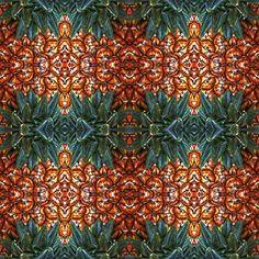 Muster sind eine Leidenschaft, Symmetrie und Wiederholung als Grundelemente und Vorgabe zum Aufbau, das Resultat ist immer überraschend