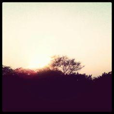 Sun set click...