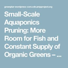 Small-Scale Aquaponics Pruning: More Room for Fish and Constant Supply of Organic Greens – Green PLUR