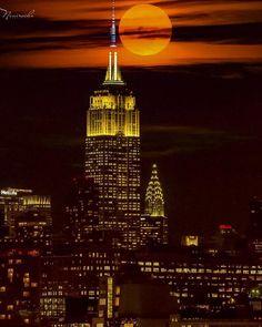 City Nights - New York